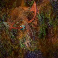 Sediments - effetto della profondità  / © Franco Donaggio, all rights reserved