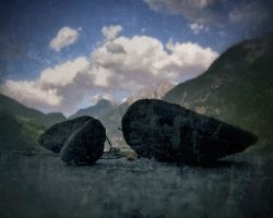 The wood of thought - pietre parlanti  /  ©Franco Donaggio, all rights reserved
