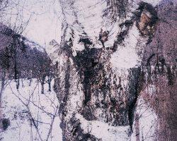 The wood of thought - segno lungo il cammino  /  ©Franco Donaggio, all rights reserved